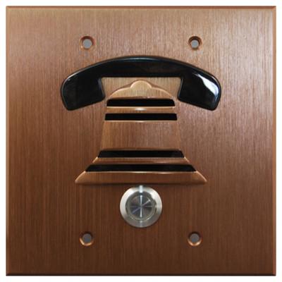 DoorBell Fon DP38 Extra Door Station, 2-Gang Masonry Box Mount