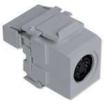 Leviton QuickPort S-Video to 110 Snap-In Connector, Gray