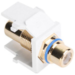 Leviton QuickPort RCA Snap-In Connector (Gold-Plated), Blue Stripe, White