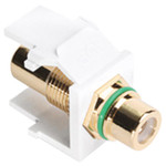 Leviton QuickPort RCA Snap-In Connector (Gold-Plated), Green Stripe, White