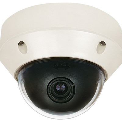 Leviton In/Outdoor Day/Night High Resolution Dome Camera